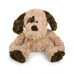 Lysebrun Bamse hund